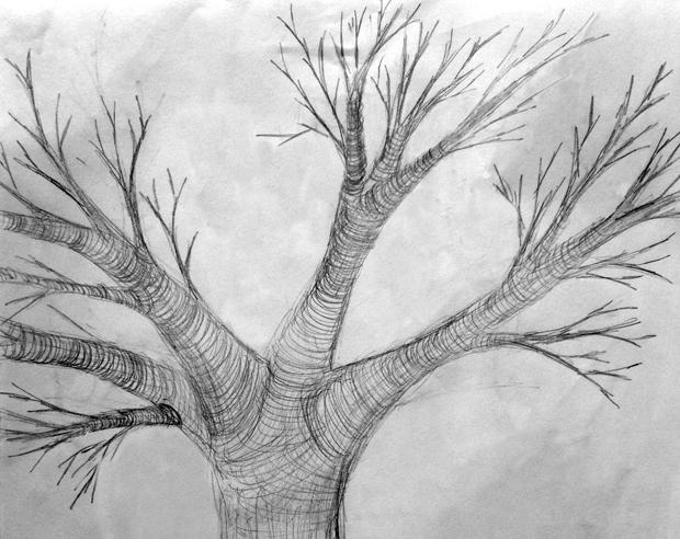 2.5.15_Tree_620w