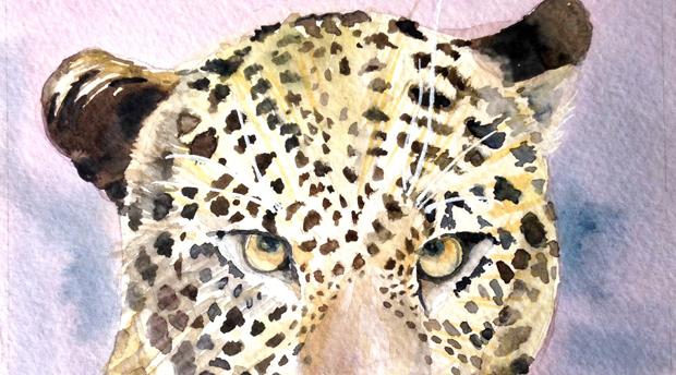 Leopard2_crop